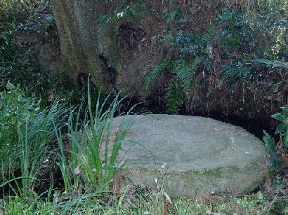 茨城廃寺の礎石はもともとはこの場所ではなく寺院廃絶後にここに運び込まれ... 歴史の里石岡ロマン